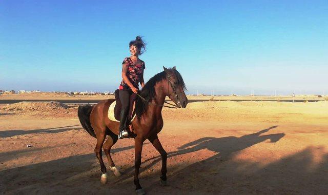 Horse Riding Trip in Sharm El Sheikh Desert excursions VIP